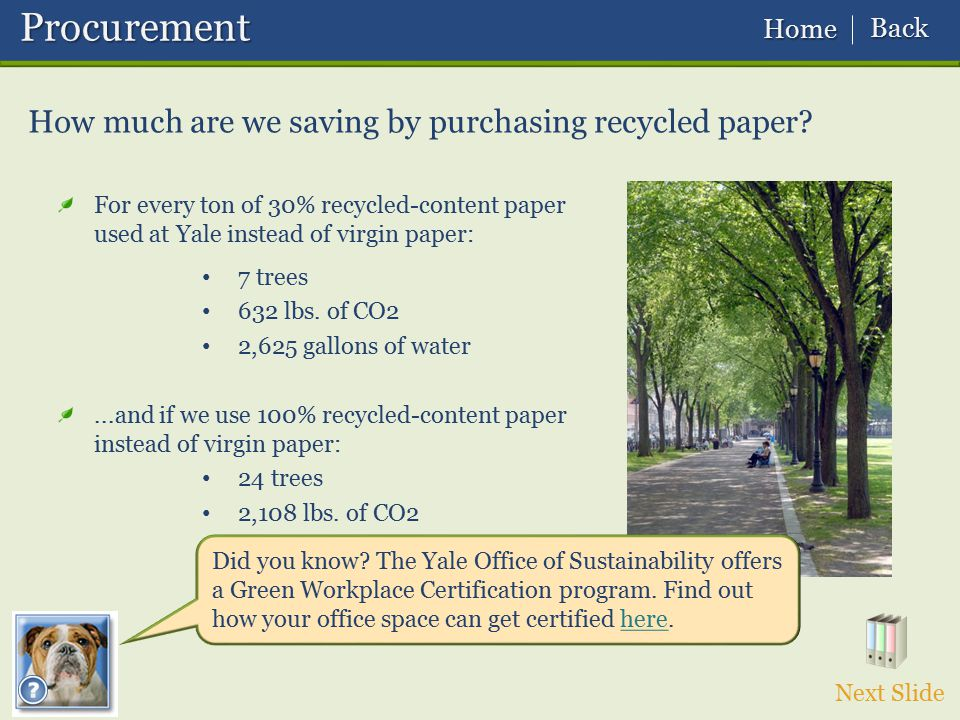 Procurement How much are we saving by purchasing recycled paper Back