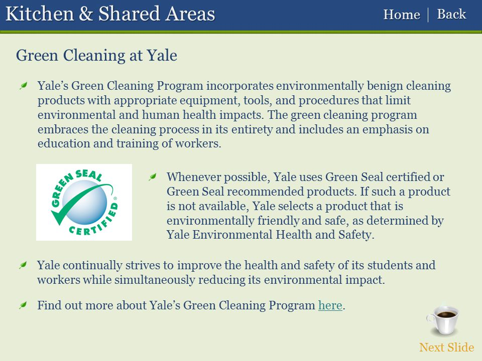 Kitchen & Shared Areas Green Cleaning at Yale Back Home
