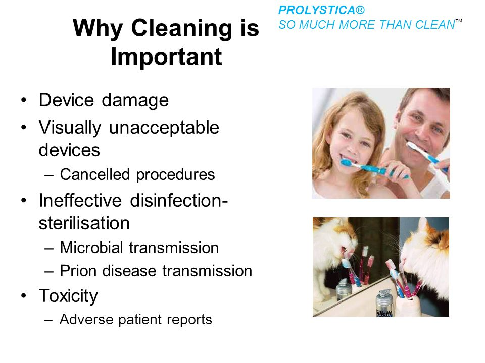 Why Cleaning is Important