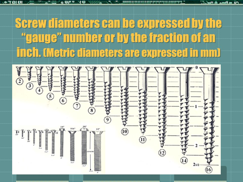 Screw diameters can be expressed by the gauge number or by the fraction of an inch.