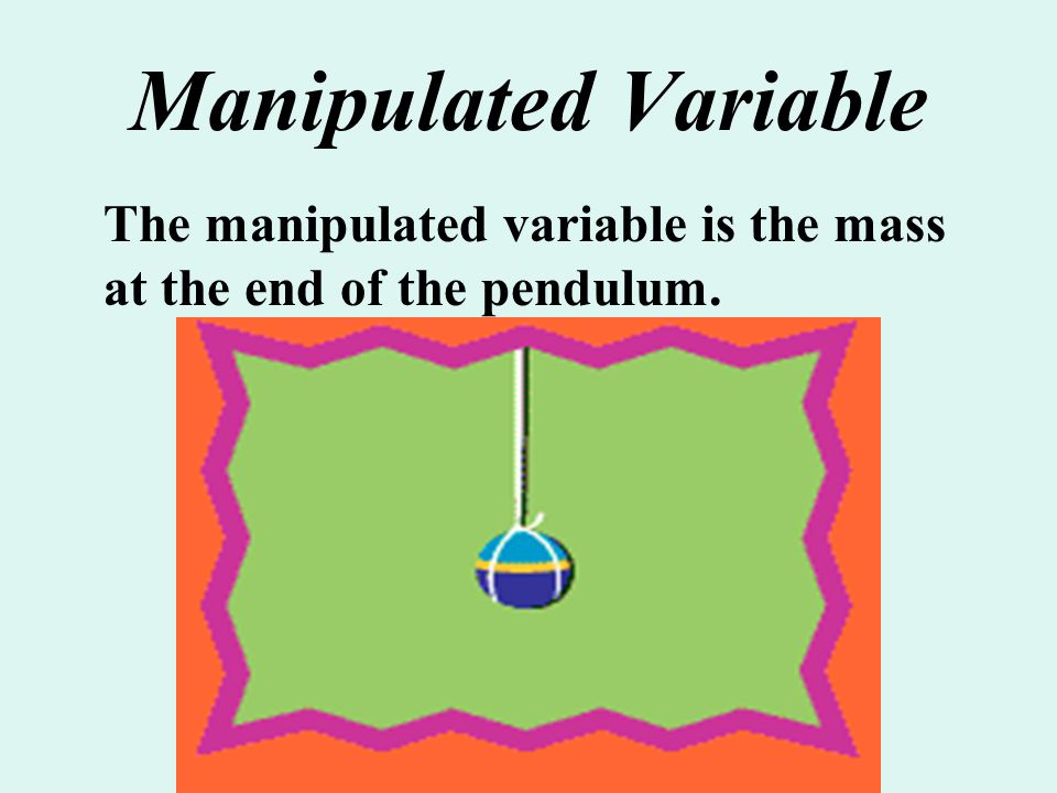 Manipulated Variable The manipulated variable is the mass at the end of the pendulum.