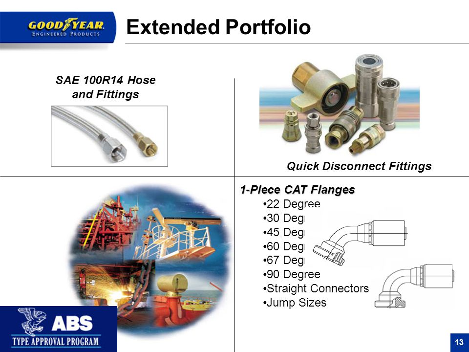Extended Portfolio SAE 100R14 Hose and Fittings