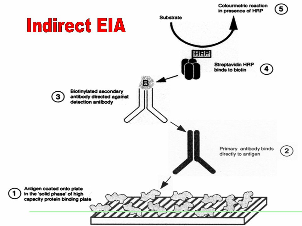 Indirect EIA