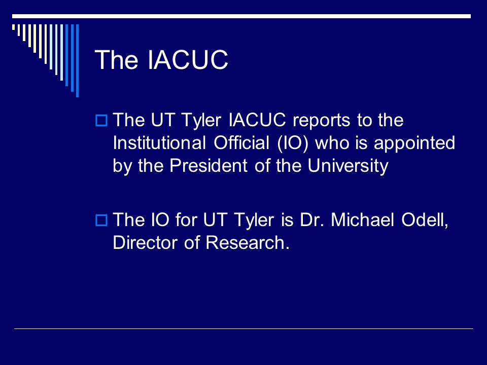 The IACUC The UT Tyler IACUC reports to the Institutional Official (IO) who is appointed by the President of the University.
