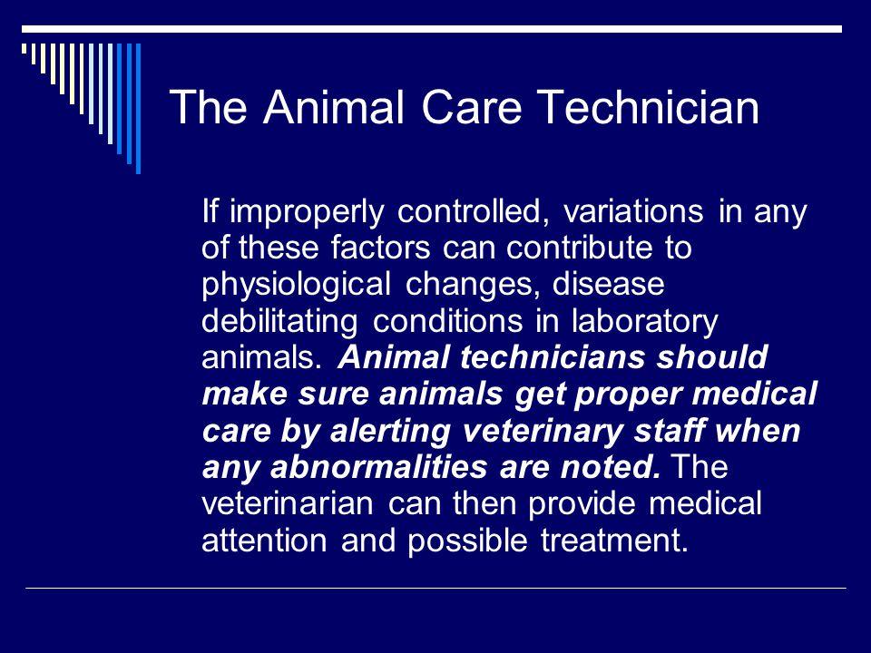 The Animal Care Technician