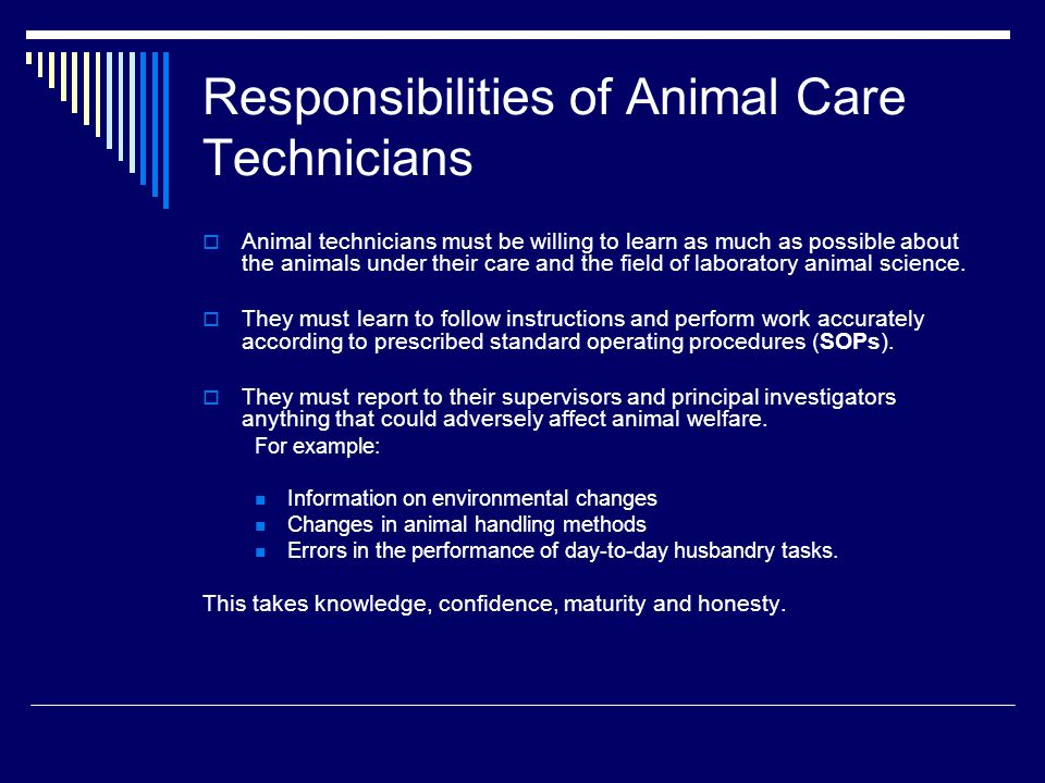 Responsibilities of Animal Care Technicians