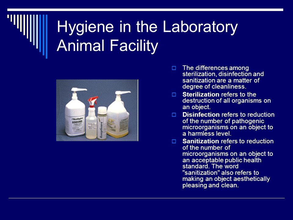 Hygiene in the Laboratory Animal Facility