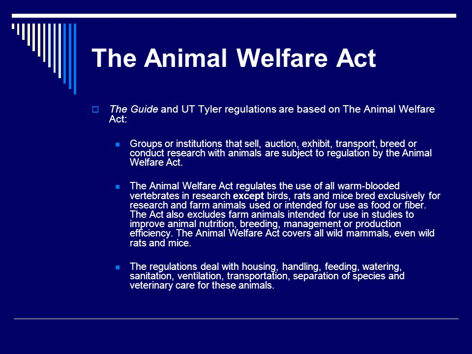 The Animal Welfare Act The Guide and UT Tyler regulations are based on The Animal Welfare Act: