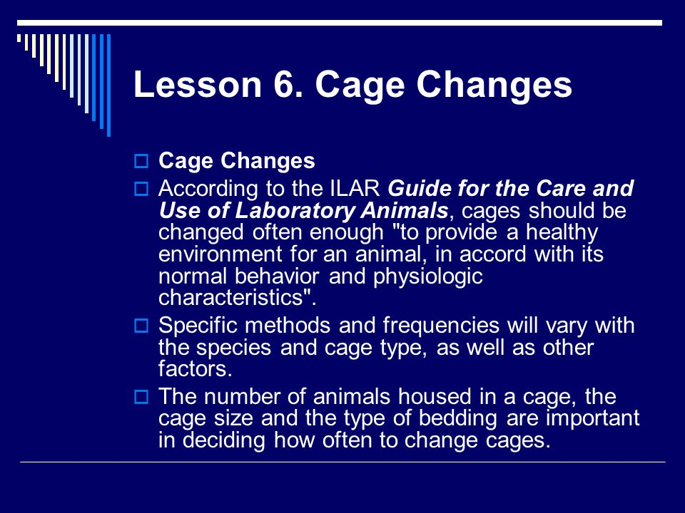 Lesson 6. Cage Changes Cage Changes