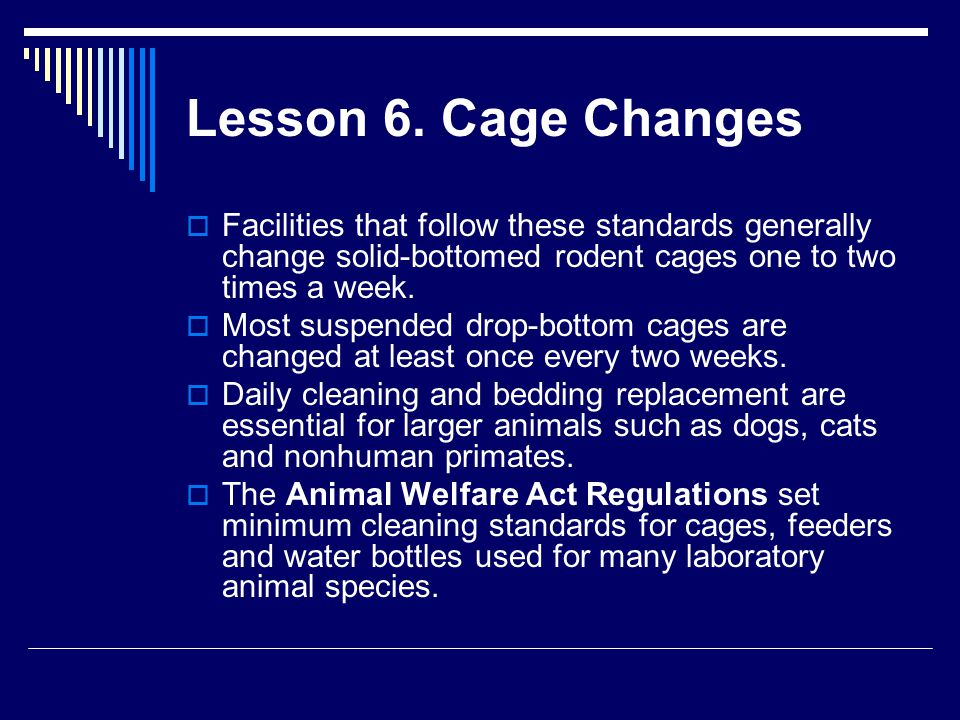 Lesson 6. Cage Changes Facilities that follow these standards generally change solid-bottomed rodent cages one to two times a week.