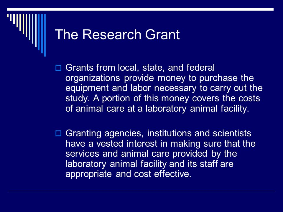 The Research Grant