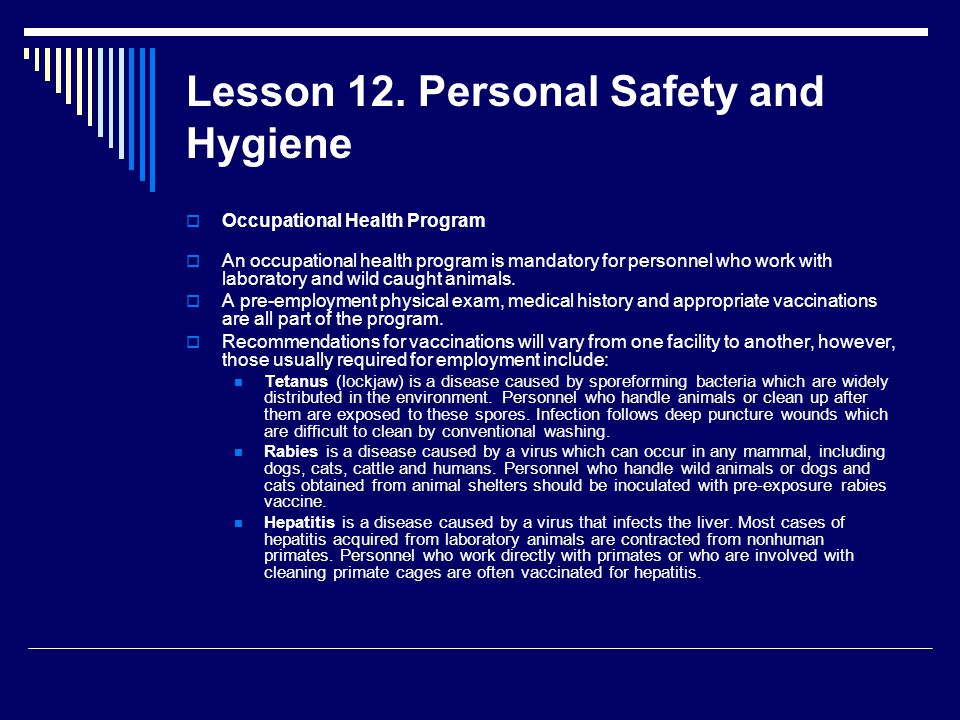 Lesson 12. Personal Safety and Hygiene