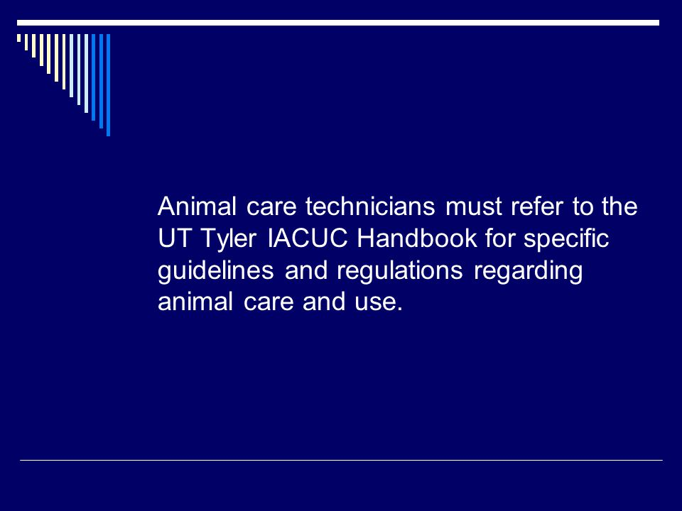Animal care technicians must refer to the UT Tyler IACUC Handbook for specific guidelines and regulations regarding animal care and use.