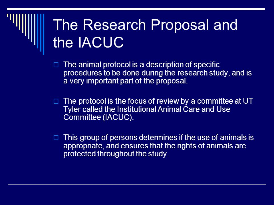 The Research Proposal and the IACUC