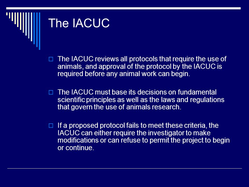 The IACUC