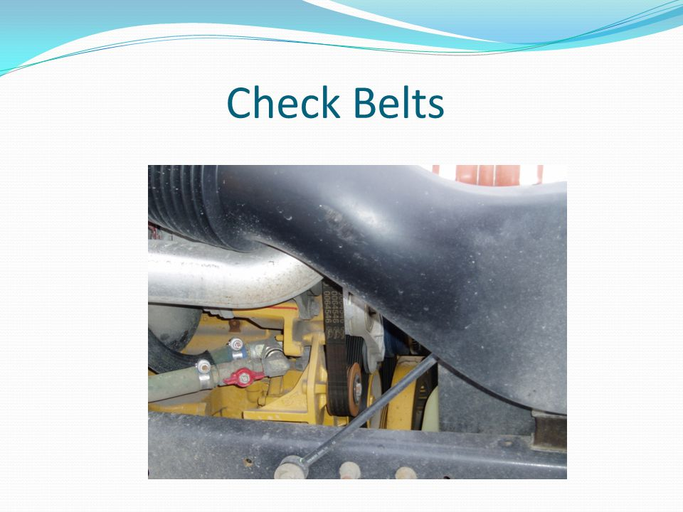 Check Belts