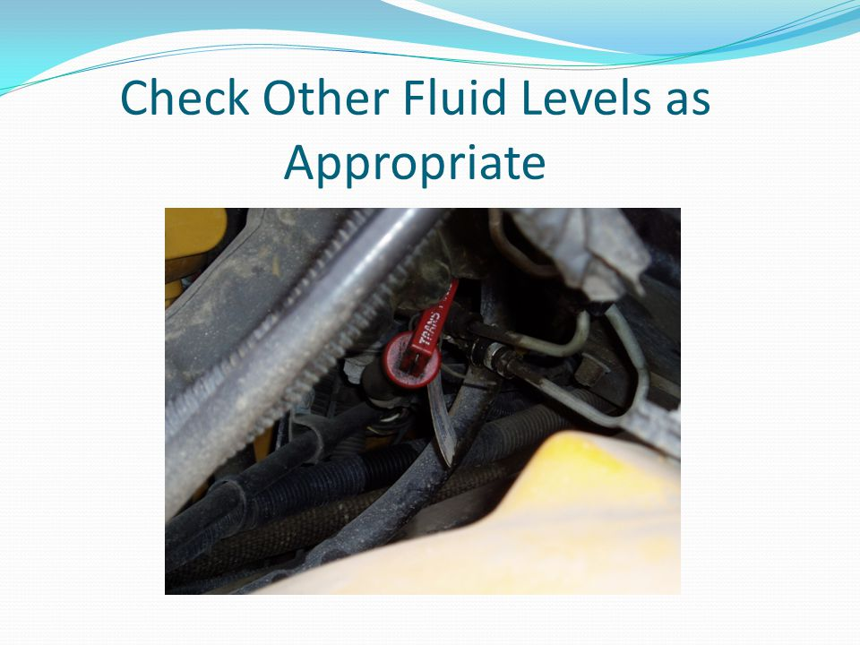 Check Other Fluid Levels as Appropriate