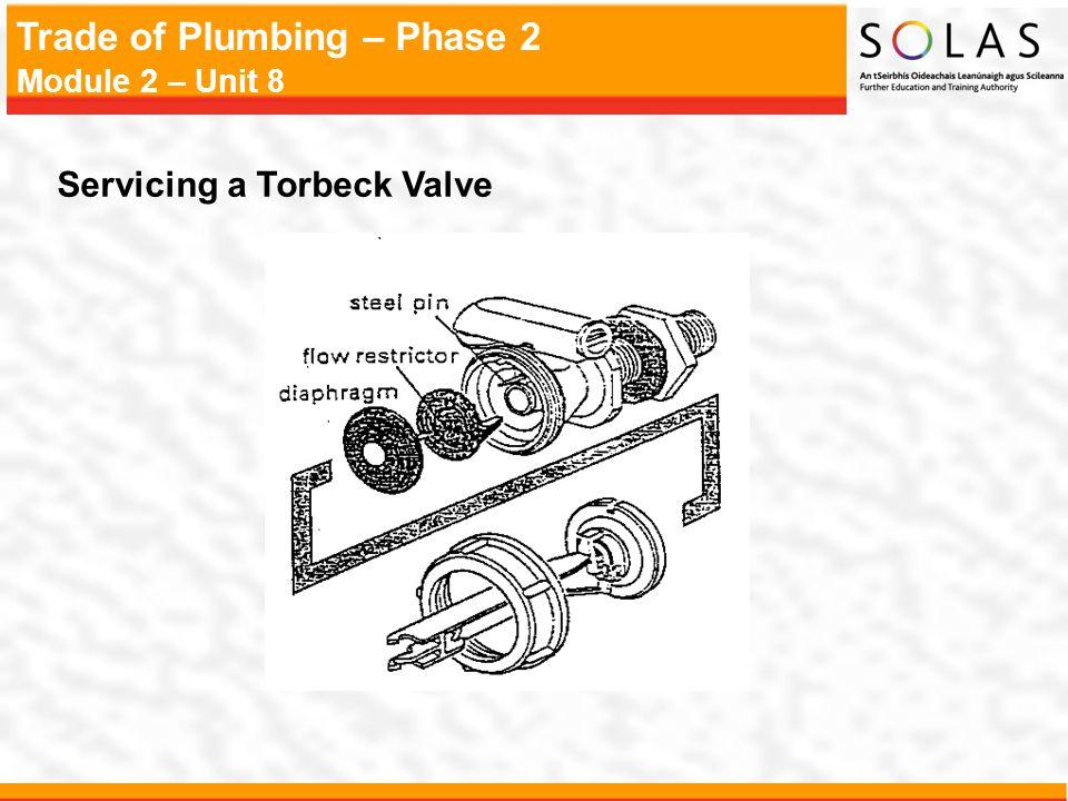 Servicing a Torbeck Valve