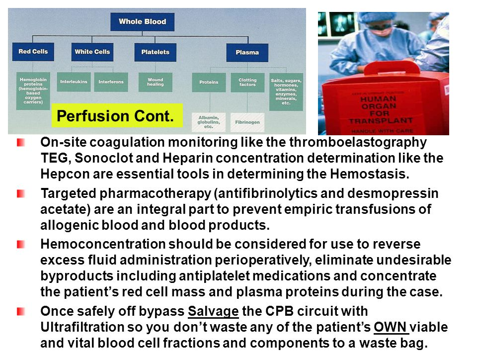 Perfusion Cont.