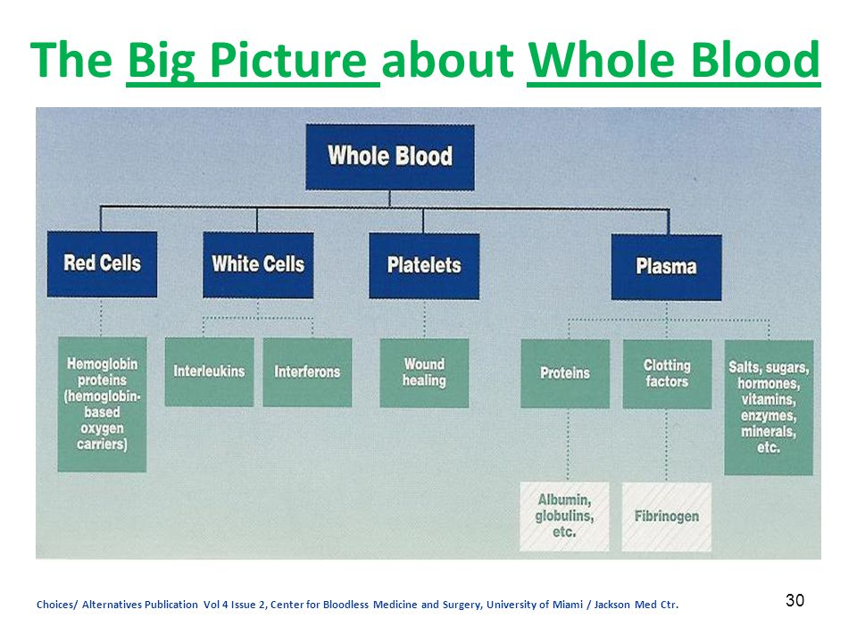 The Big Picture about Whole Blood