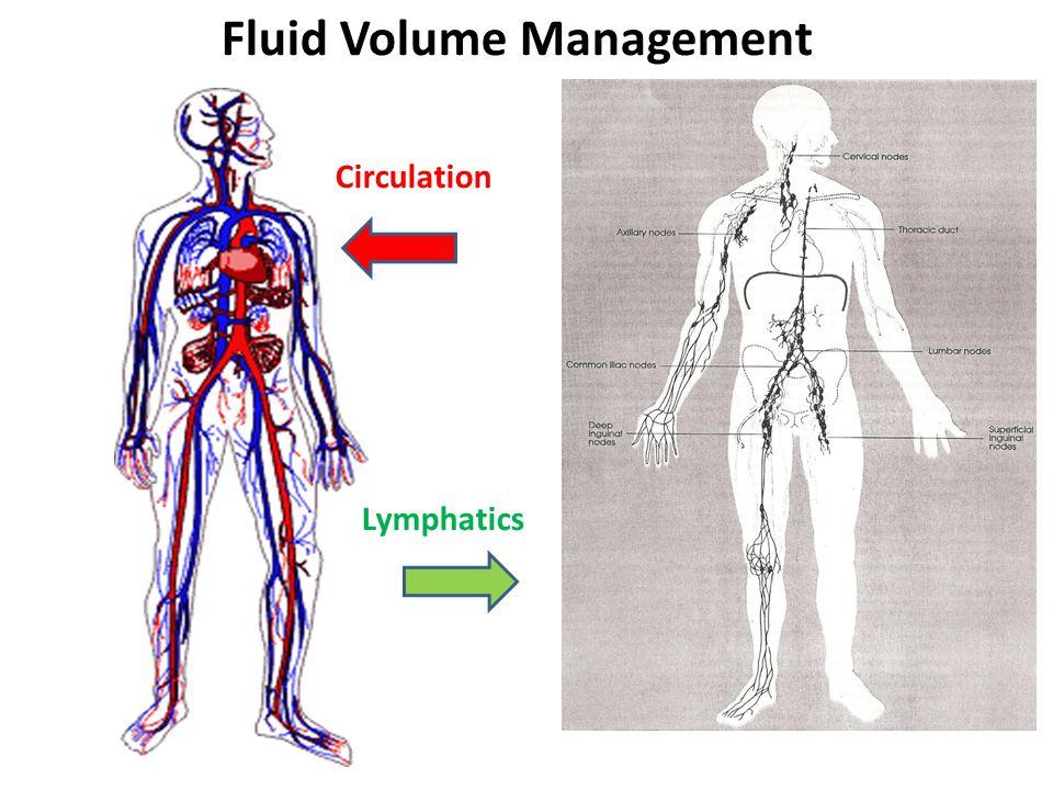 Fluid Volume Management