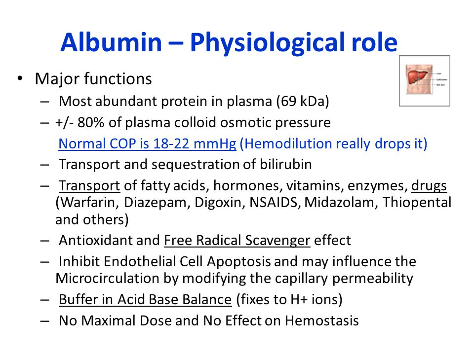 Albumin – Physiological role