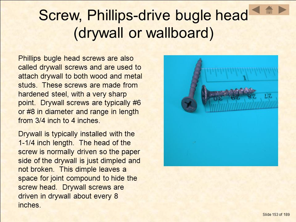Screw, Phillips-drive bugle head (drywall or wallboard)