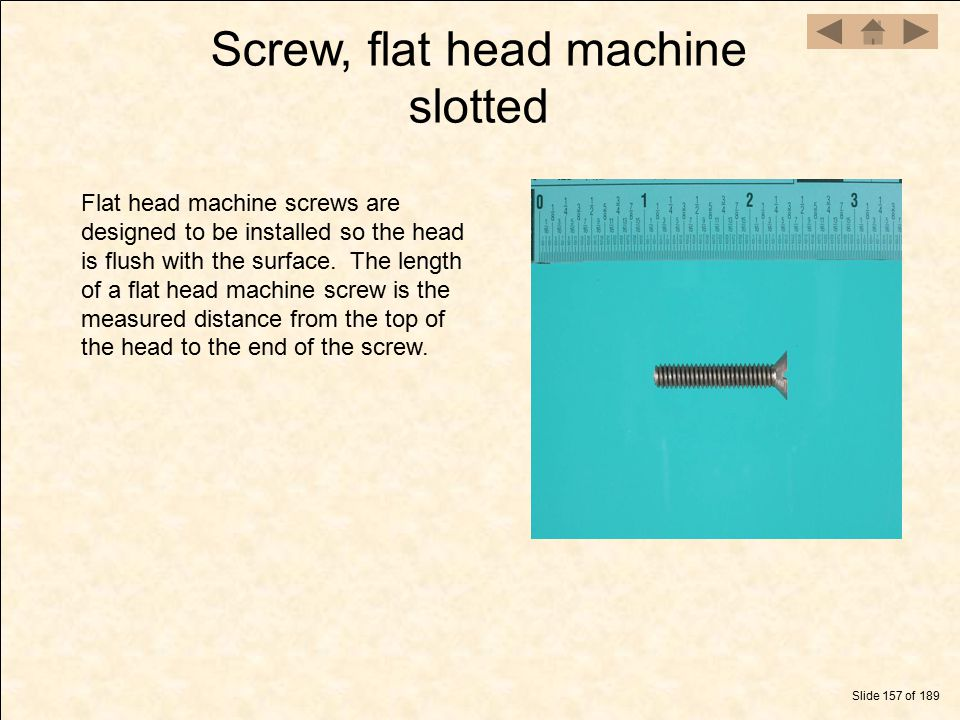 Screw, flat head machine slotted