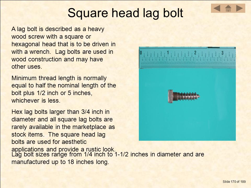 Square head lag bolt