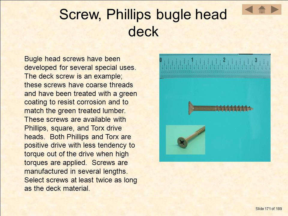 Screw, Phillips bugle head deck