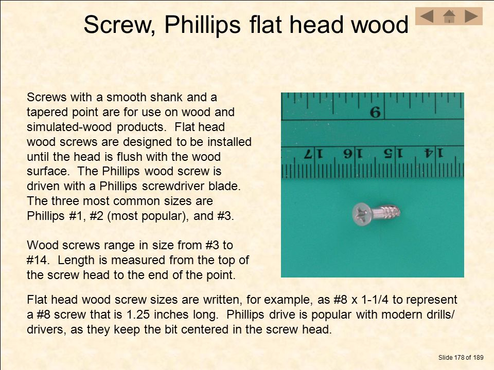 Screw, Phillips flat head wood