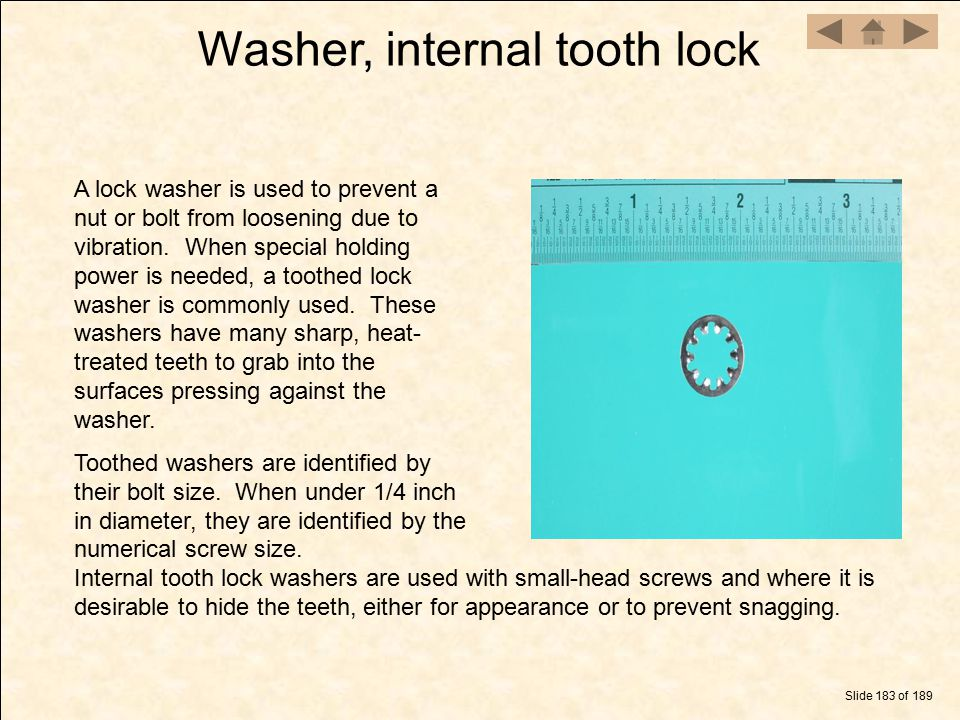Washer, internal tooth lock