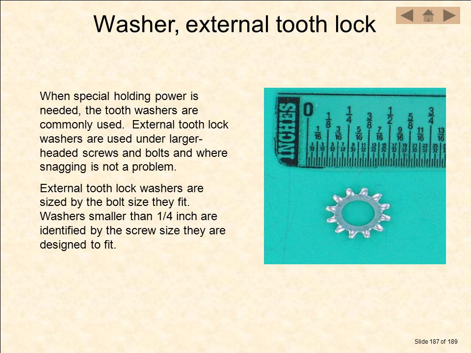 Washer, external tooth lock