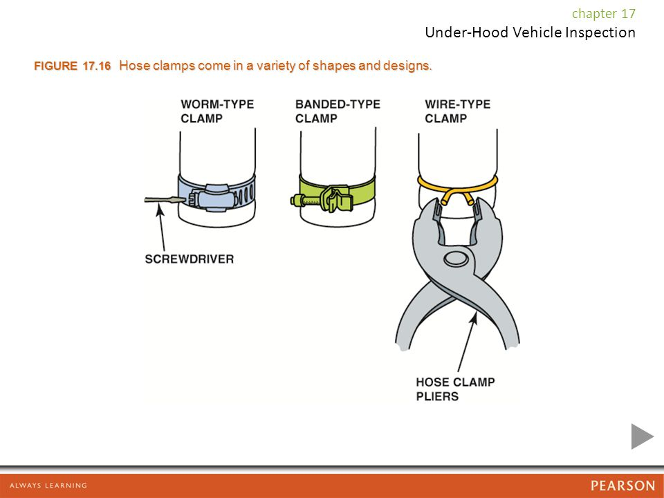 FIGURE 17.16 Hose clamps come in a variety of shapes and designs.
