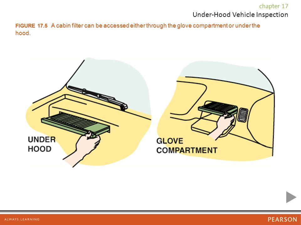 FIGURE 17.5 A cabin filter can be accessed either through the glove compartment or under the hood.