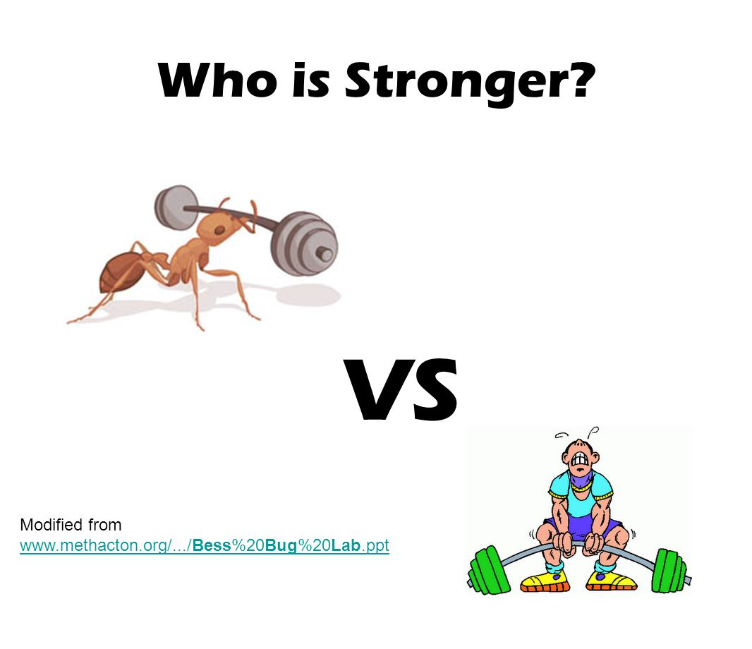 VS Who is Stronger Modified from
