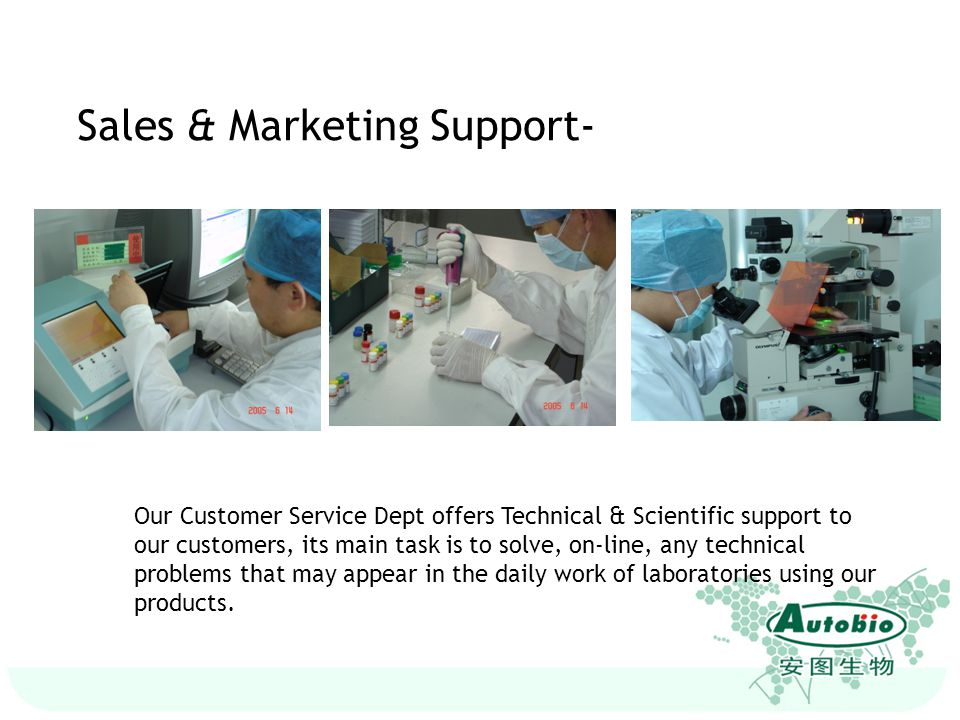 Sales & Marketing Support-