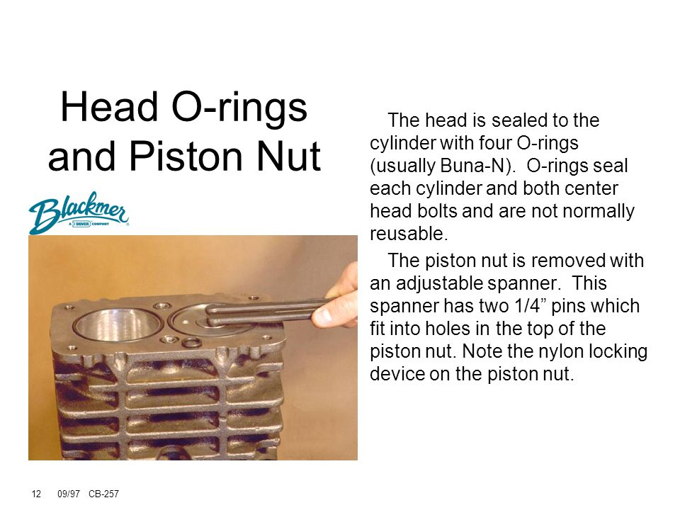 Head O-rings and Piston Nut