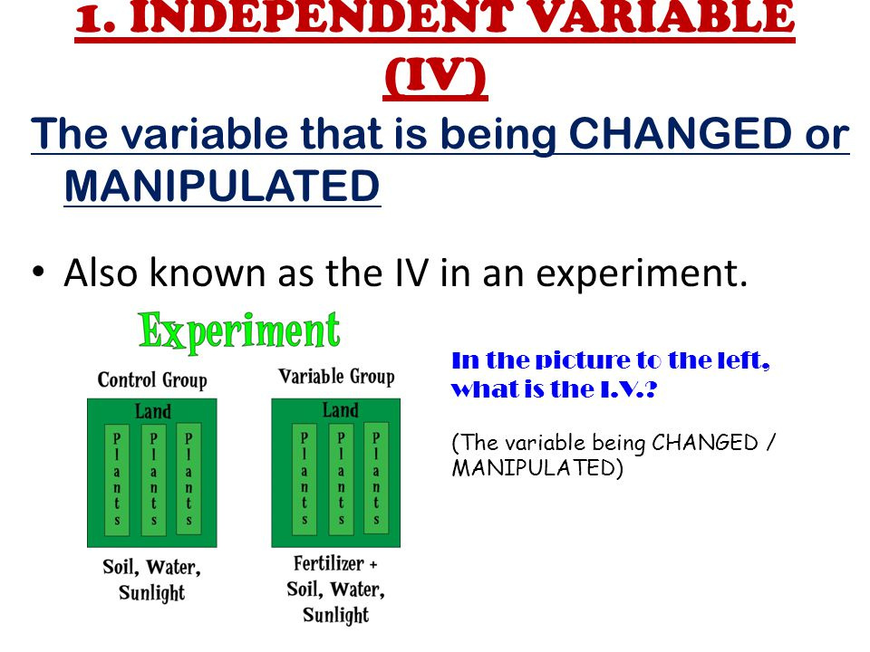 1. INDEPENDENT VARIABLE (IV)