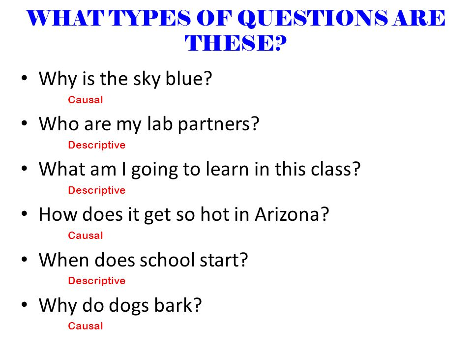 WHAT TYPES OF QUESTIONS ARE THESE