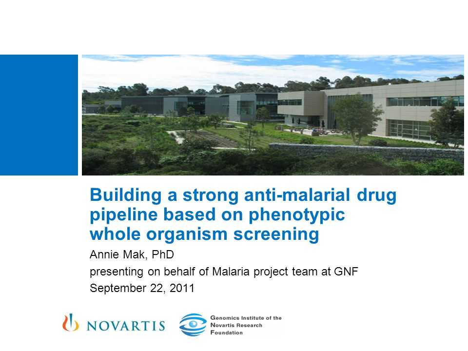 Building a strong anti-malarial drug pipeline based on phenotypic