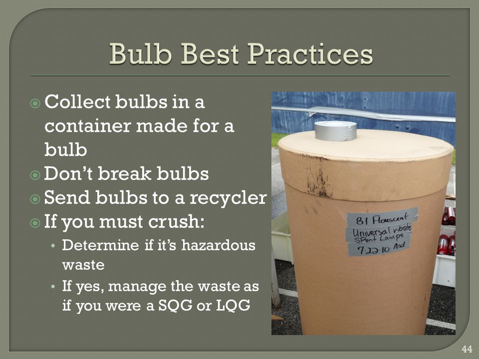 Bulb Best Practices Collect bulbs in a container made for a bulb