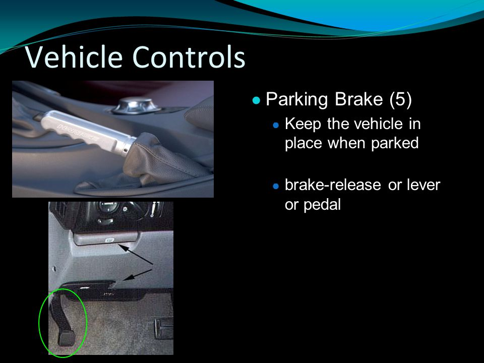 Vehicle Controls Parking Brake (5)