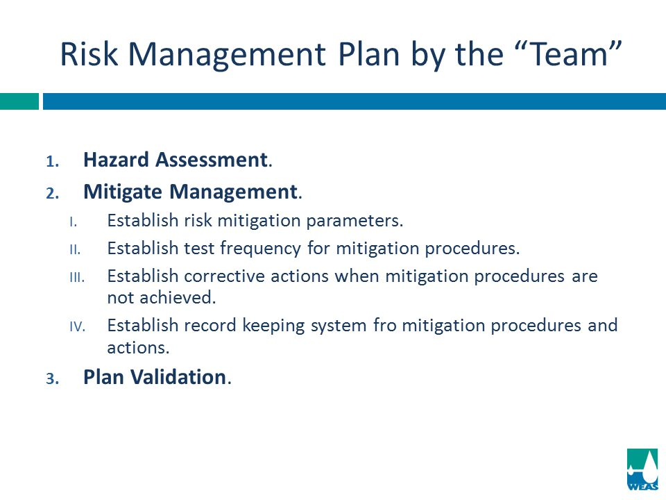 Risk Management Plan by the Team