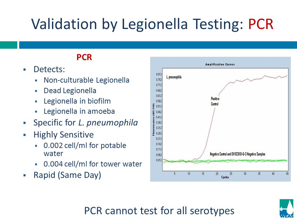 Validation by Legionella Testing: PCR