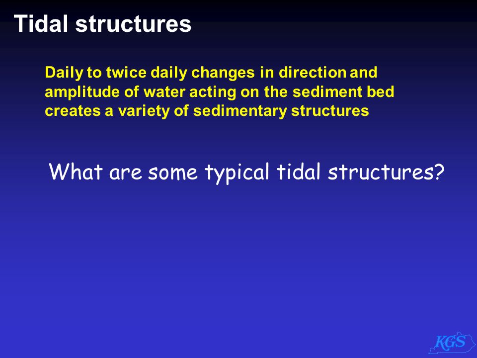 Tidal structures What are some typical tidal structures