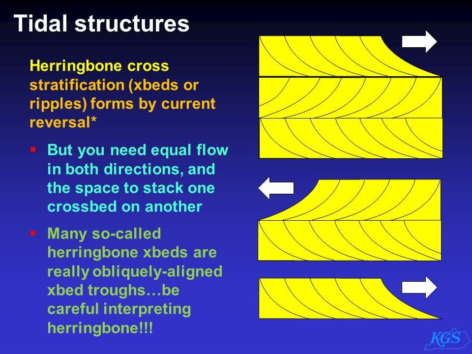 Tidal structures Herringbone cross stratification (xbeds or ripples) forms by current reversal*