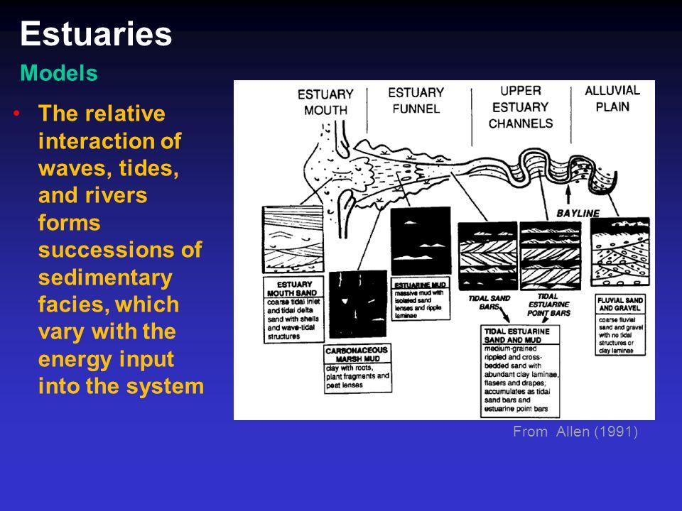 Estuaries Models.