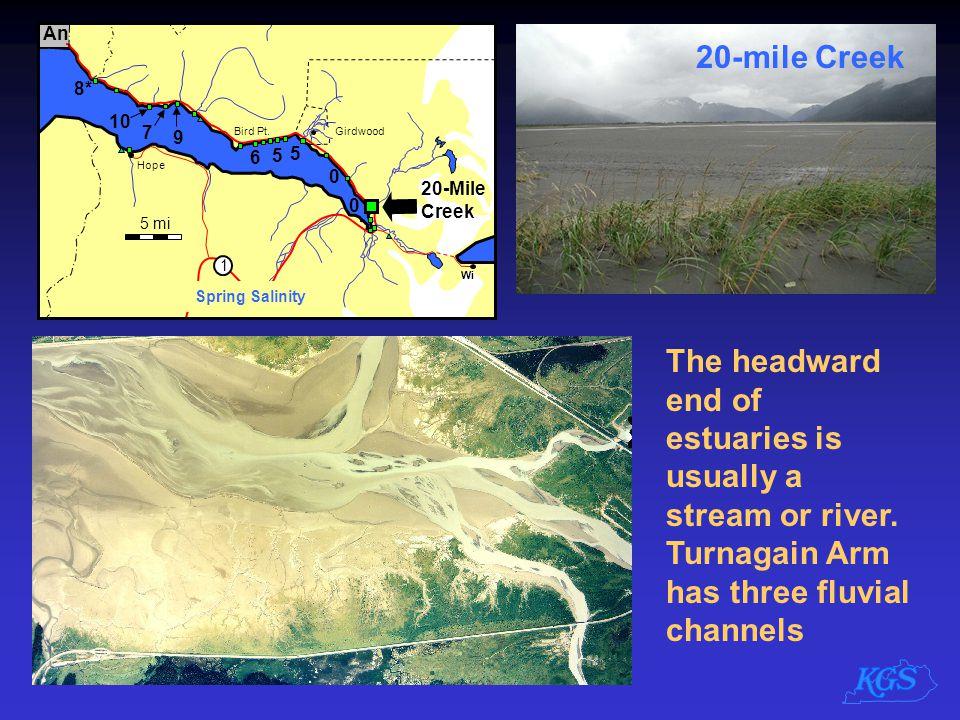 5 mi An. 1. 8* 10. 9. 7. 6. 5. Wi. Spring Salinity. Hope. Bird Pt. Girdwood. 20-Mile Creek.