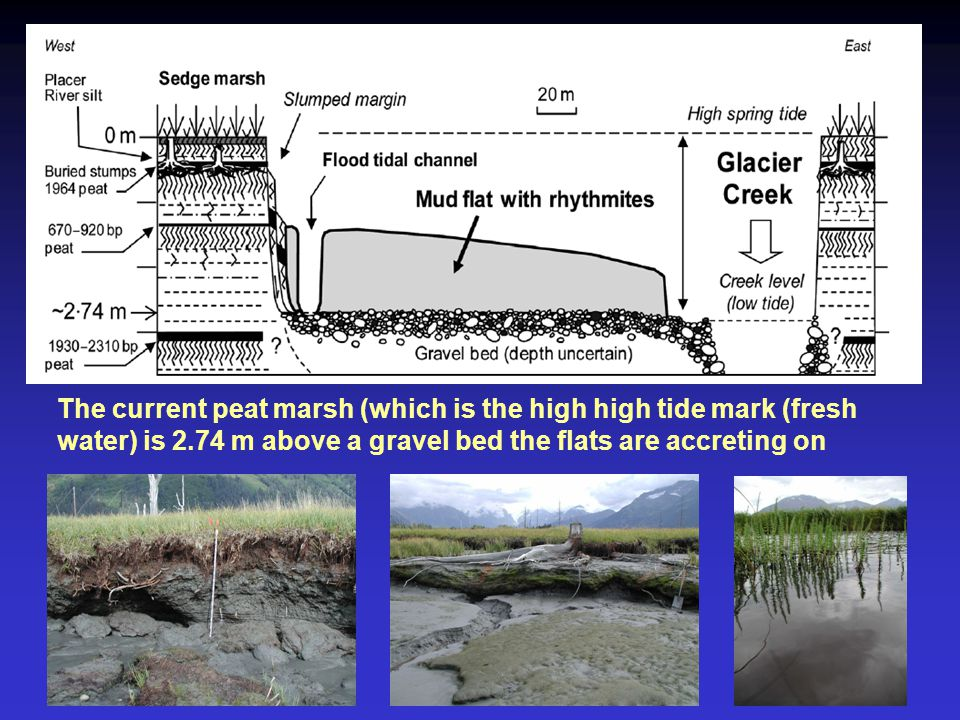 The current peat marsh (which is the high high tide mark (fresh water) is 2.74 m above a gravel bed the flats are accreting on
